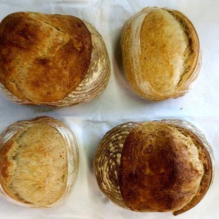 Real Artisan Bread
